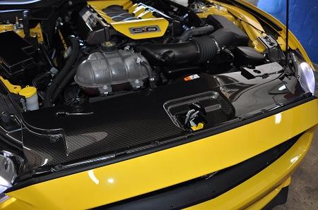 2015-2017 Mustang Carbon Fiber Radiator Cover
