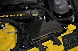 2015-2017 Mustang Carbon Fiber Fuse Box Cover